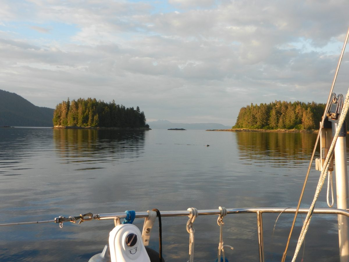 Prepping for Sergius Narrows, Swimming Deer, Technology Roundup
