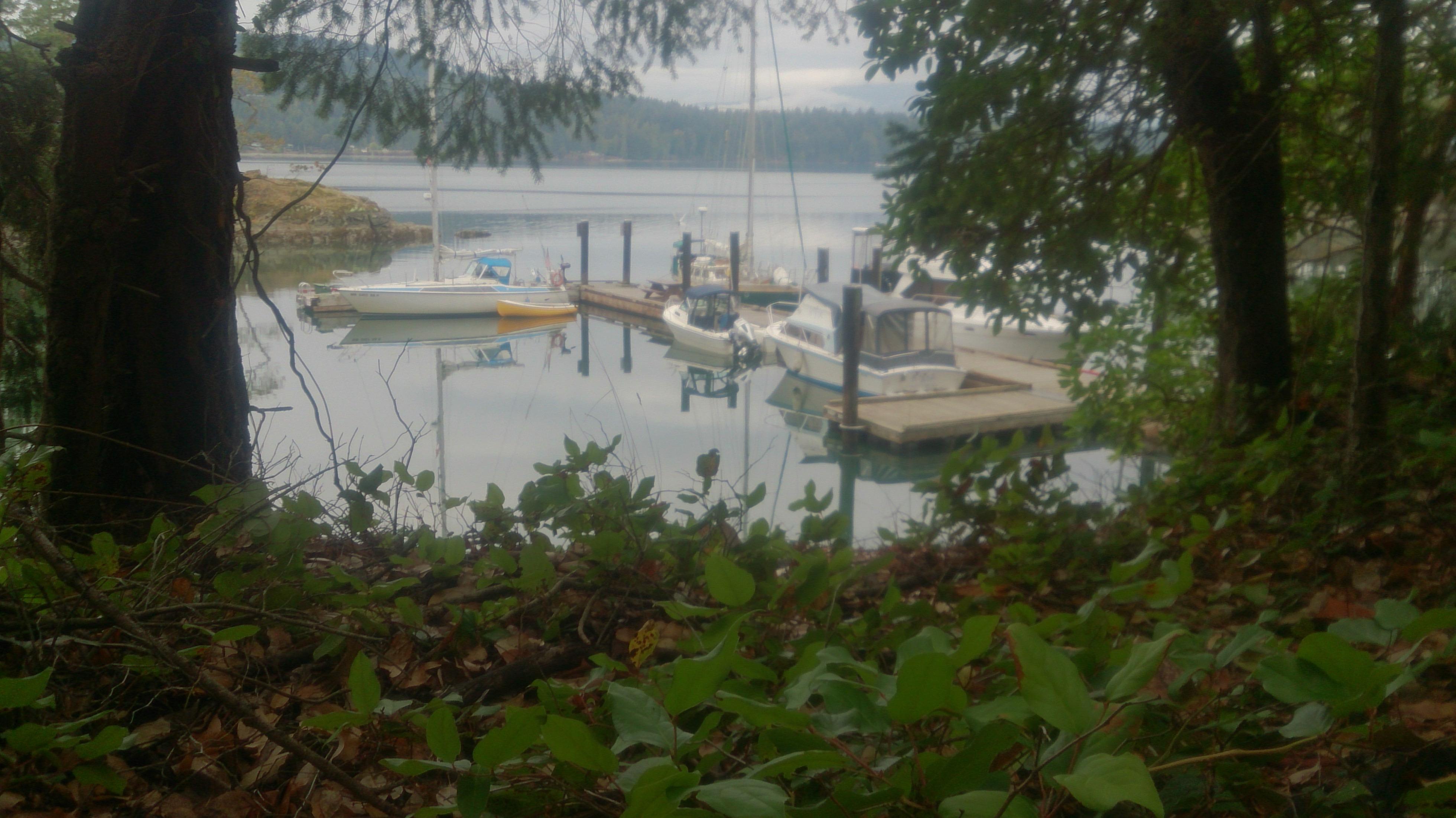 Full dock in Conover Bay