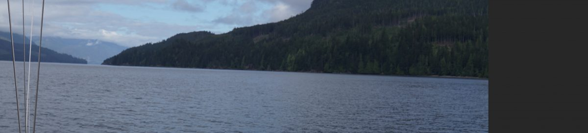 Small Inlet, Johnstone Strait, Hilary, Two Whales Feeding and things that work